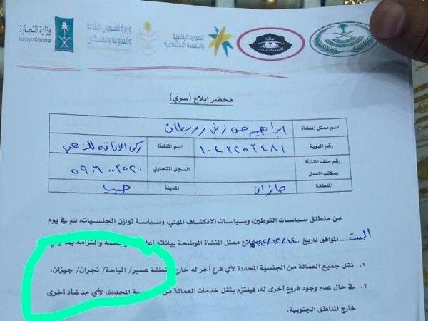 اخراج اساتید یمنی