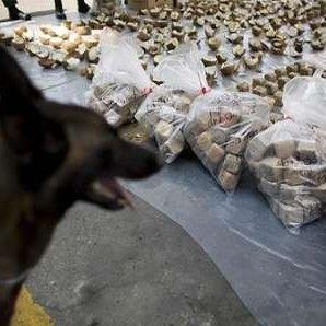 موافقت مراجع تصمیمگیر با پیشنهاد توزیع دولتی موادمخدر