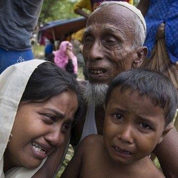 شیخ الازهر: جهان در نجات مسلمانان روهینجا ناتوان مانده است