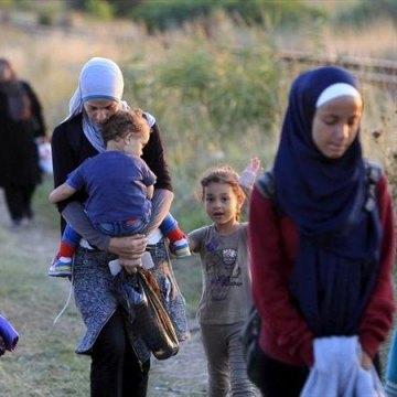 سازمان ملل: بیش از دو میلیون آواره جدید تنها در طول سال جاری داشتیم