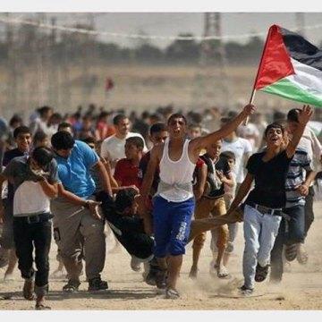 شهادت ۴۸۸ فلسطینی از زمان شناسایی قدس به عنوان پایتخت