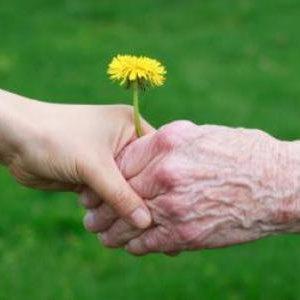 سالمند آزاری رتبه سوم از خشونت های خانگی