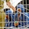 مجازات-سران-اسراییل-در-دیوان-کیفریبینالمللی - وضعیت بحرانی 17 زندانی اعتصاب کننده فلسطینی