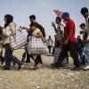 اتحادیه-اروپا-در-شکنجه-پناهجویان-مشارکت-میکند - اخراج 801 پناهجو از اتحادیه اروپا به ترکیه در سال 2016