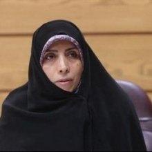 قوانین - امینزاده: ایران از قوانین تسهیلکننده تجارت استقبال میکند/تلاش برای تکریم هر چه بیشتر شهروندان