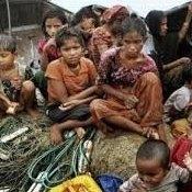 استان-راخین-میانمار - ابراز نگرانی گزارشگر ویژه سازمان ملل از وضعیت حقوق بشر میانمار