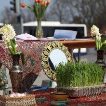برگزاری نمایشگاه صلح دوستی ایرانیان توسط سمن های ایرانی دارای مقام مشورتی - exhibition geneva 1