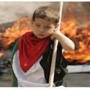 فلسطین - مجازات بازدارنده اشغالگری رژیم صهیونیستی است