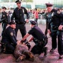 پلیس-آمریکا - ۵۴ هزار نفر در سال ۲۰۱۲ توسط پلیس آمریکا کشته و زخمی شدند