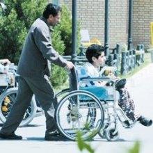 مشارکت معلولان در فعالیتهای اقتصادی، اجتماعی و توسعه کشور - معلول