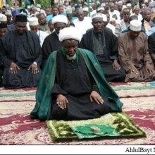 شیعیان - حمله به شیعیان نیجریه، مقابله با الگوی صلحآمیز اسلام
