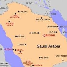 سازمان ملل عربستان را محکوم کرد