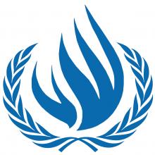 افغانستان عضویت شورای حقوق بشر را کسب کرد - شورای حقوق بشر. ویکی پدیا