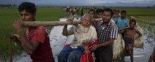 غیرنظامیان - نیاز 434 میلیون دلاری سازمان ملل برای حل بزرگترین بحران مهاجرت در جهان