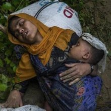 روهینگیا - رئیس هیأت جدید بحران روهینگیا خواستار دسترسی به استان راخین شد