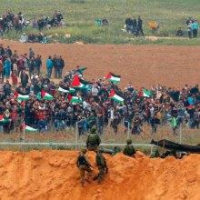 فلسطین - شهادت ۱۸۳ فلسطینی در غزه